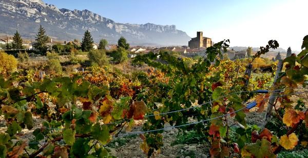 Candidatura UNESCO Rioja Alavesa