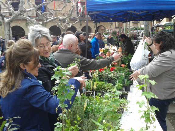 Mercado de la Flor en Elciego