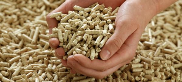 HAZI quiere utilizar el sarmiento desechado como 'combustible'