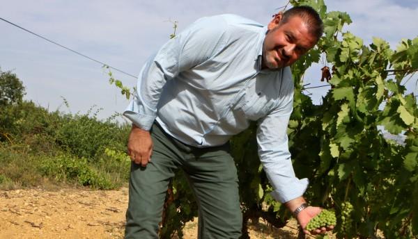 Candidatura de Rioja Alavesa y La Rioja a Patrimonio Mundial