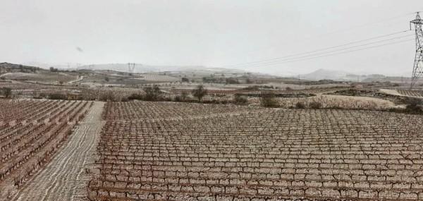 Nevada en Rioja Alavesa