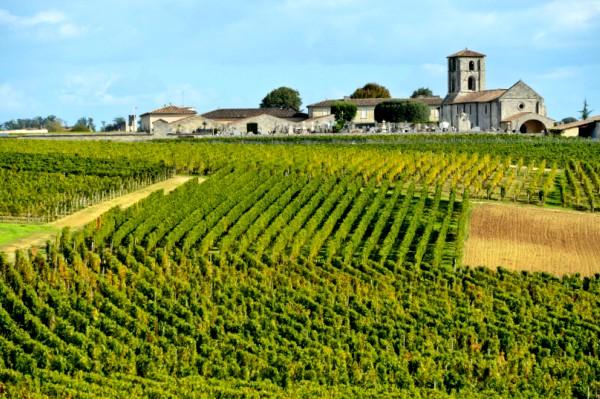 Paisajes culturales del vino y el viñedo