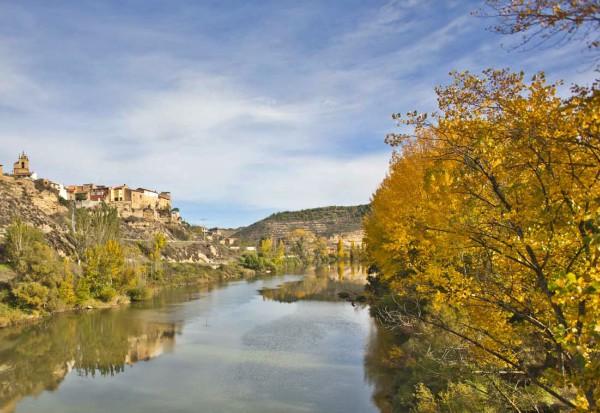 Cierre de bodegas en Rioja Alavesa