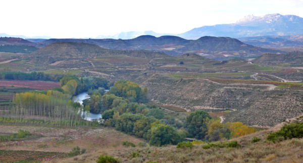 Aves de Rioja Alavesa