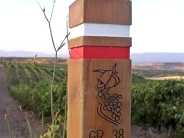 Ruta del Vino y el Pescado
