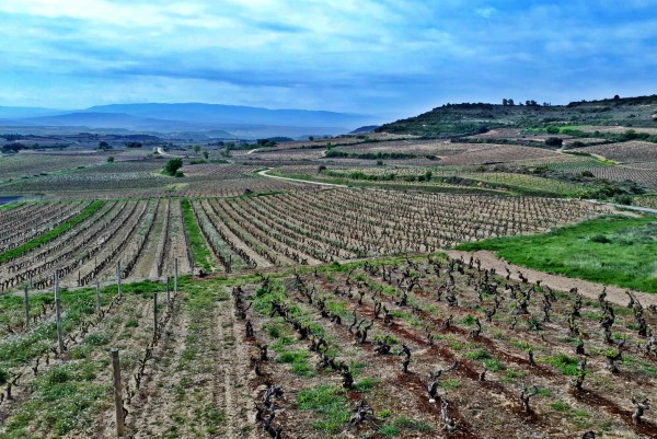 Paisaje Cultural de Rioja Alavesa