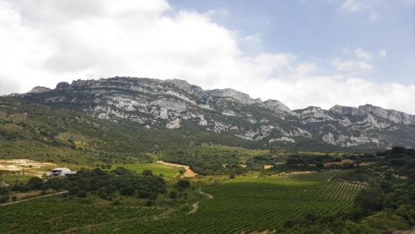 Vinas-Sierra