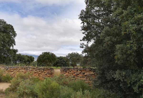 Rioja Alavesa en 2030