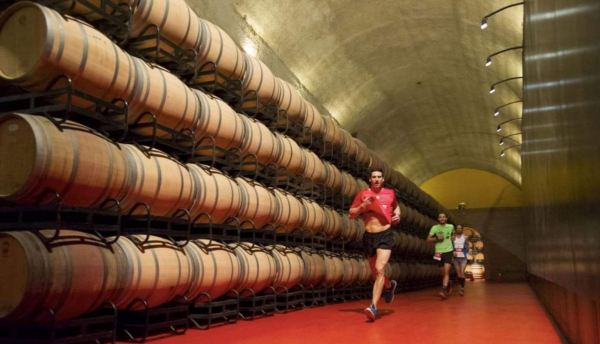 III Rioja Alavesa Wine Run