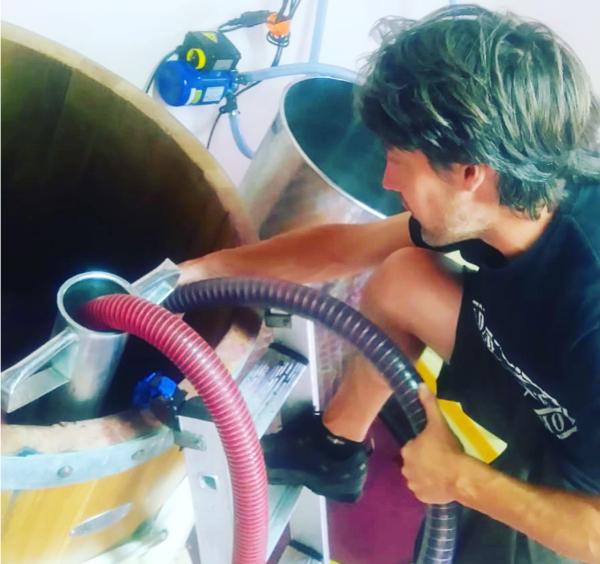 Vendimia de Rioja Alavesa