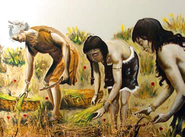 Vino prehistórico