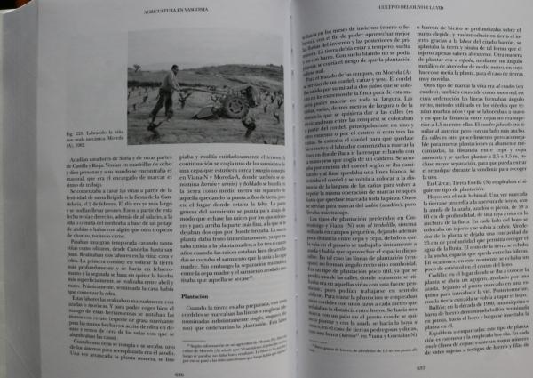 Detalle-Tomo-II