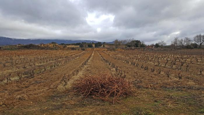 Paisaje Cultural del Vino y el Viñedo de Rioja Alavesa