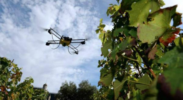 Drones-y-vides