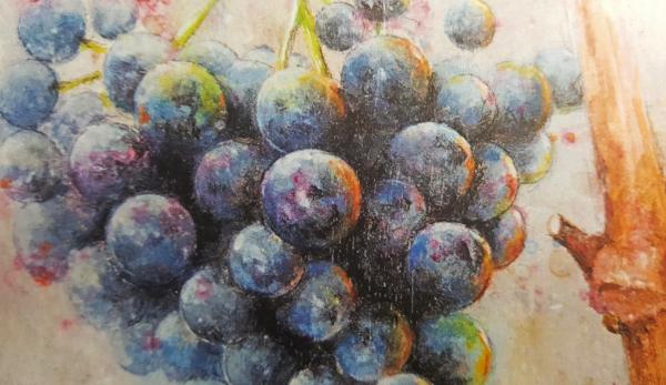 Sale-de-Uvas