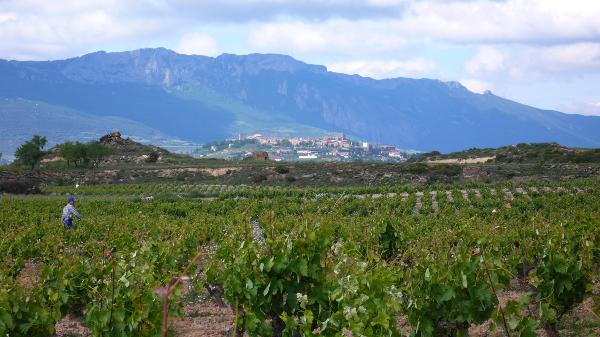 Nombre de Rioja Alavesa