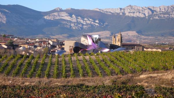 Carta de Rioja Alavesa