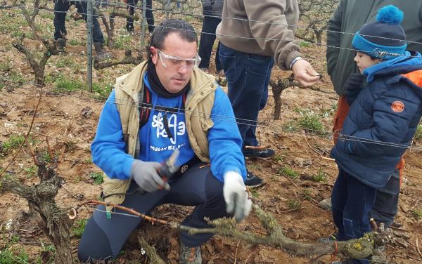 Concurso de poda en Rioja Alavesa
