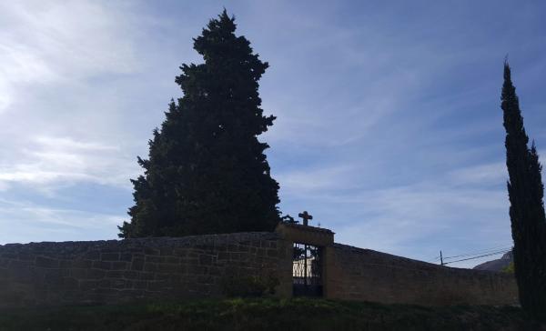 Cementerio-Samaniego