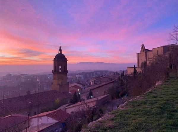 Día de Rioja Alavesa