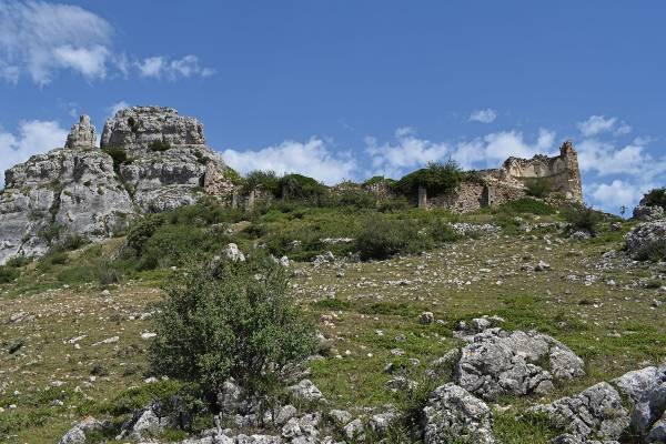 Santuario-Tolono