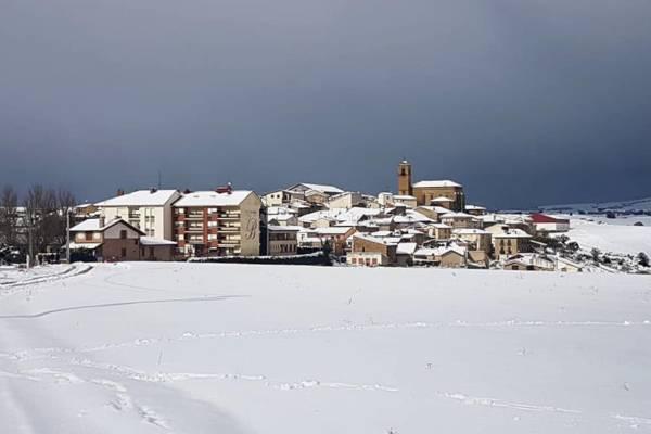 Yecora-Nevado