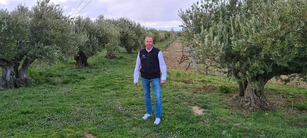 Olivos-Vina