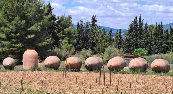 Tinajas-Tierra